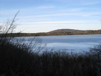 State Officials Approve 2016 Deer Management Plan for Blue Hills State Reservation