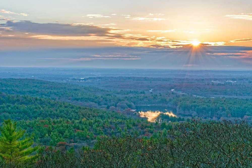 A win for the Blue Hills forests!