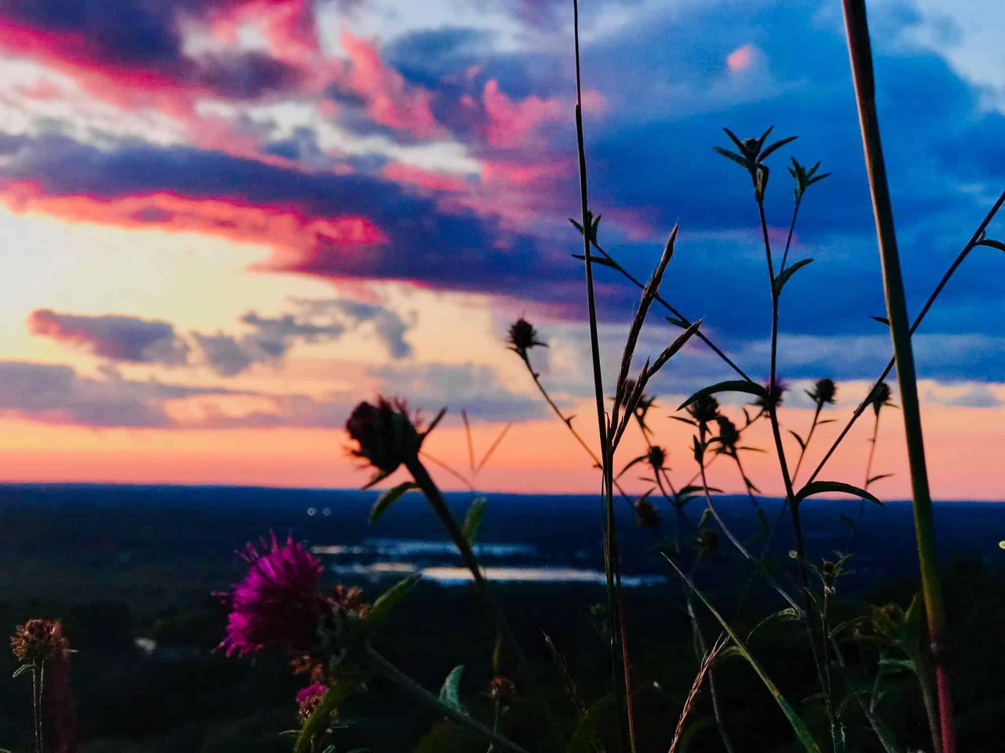 sunset at trailside museum blue hills