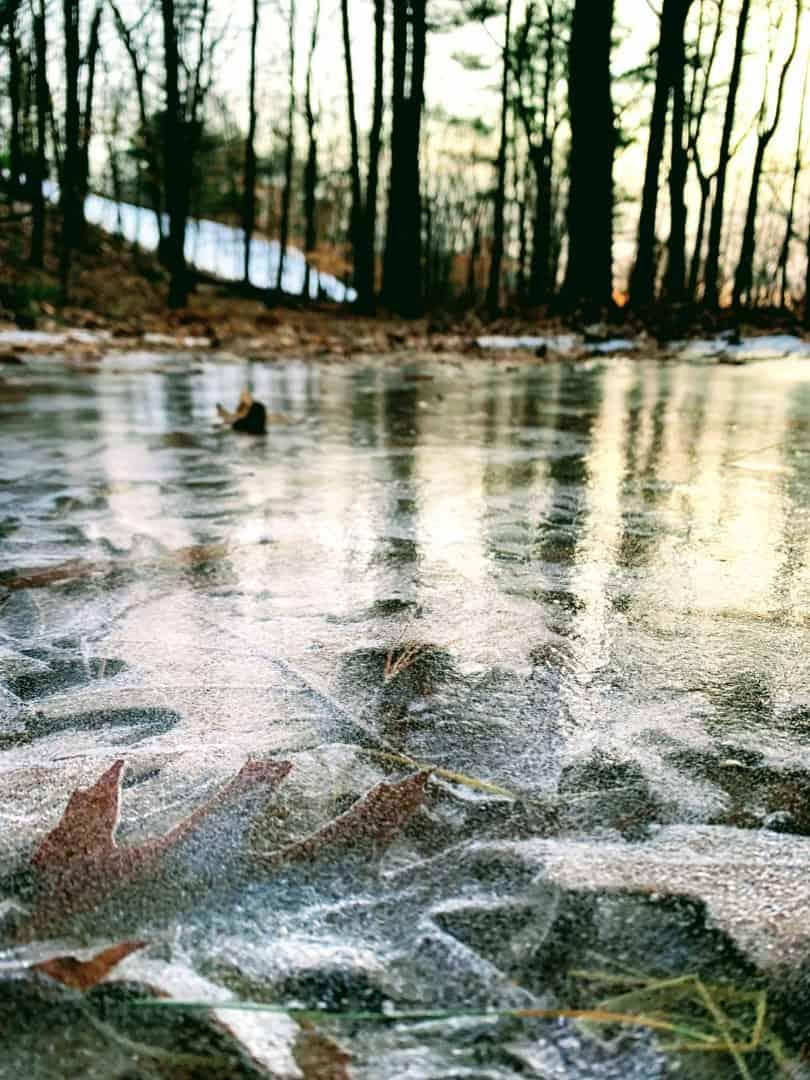 iced over pond on blue hills ski trails