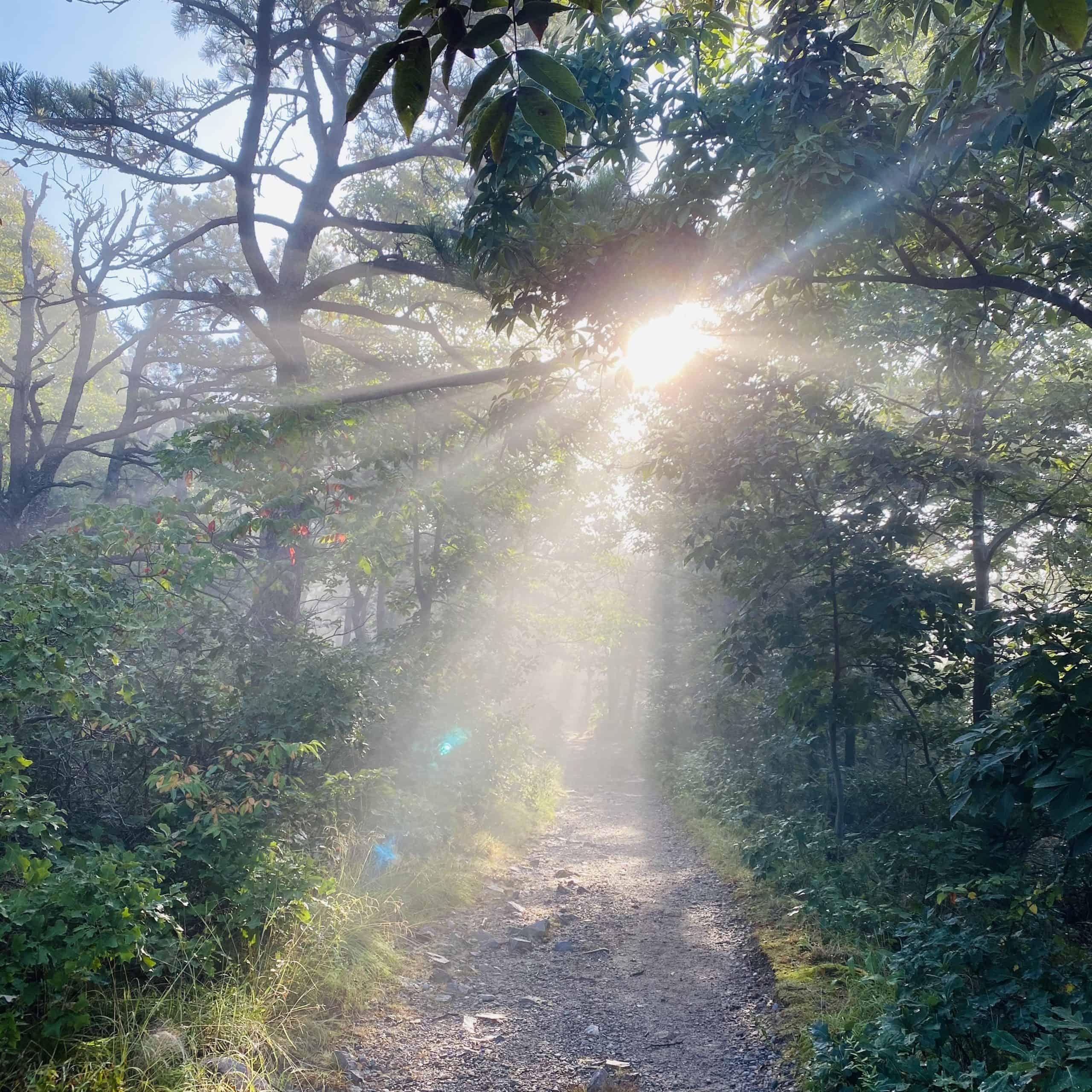 walking towards the sunrise
