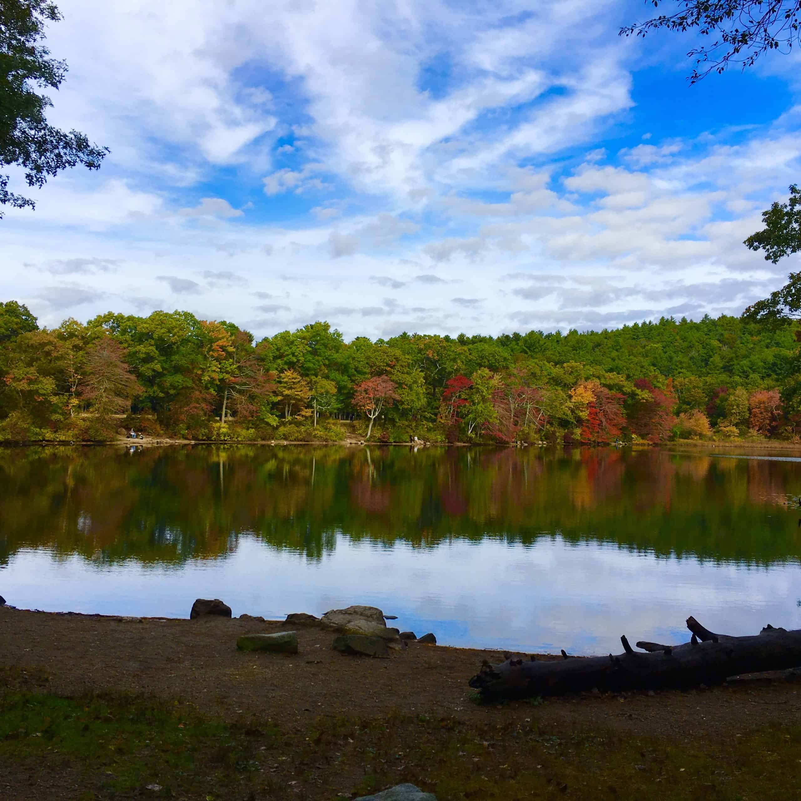 houghton rsquo s pond in fall