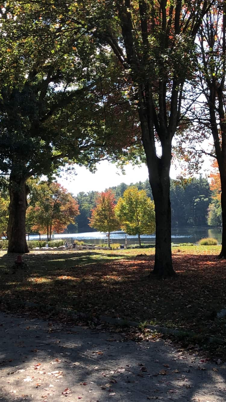 fall at blue hills