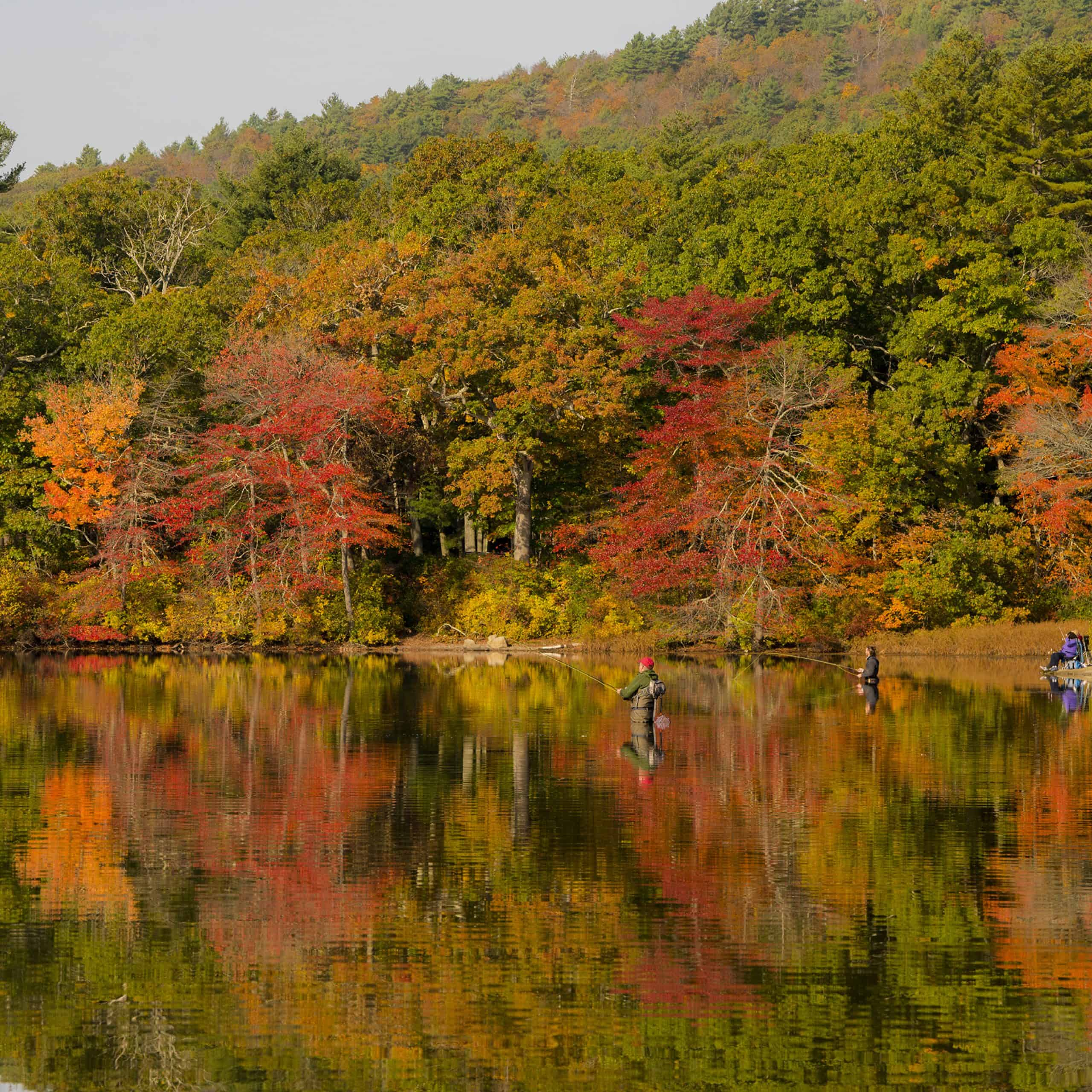 houghton s pond in autumn