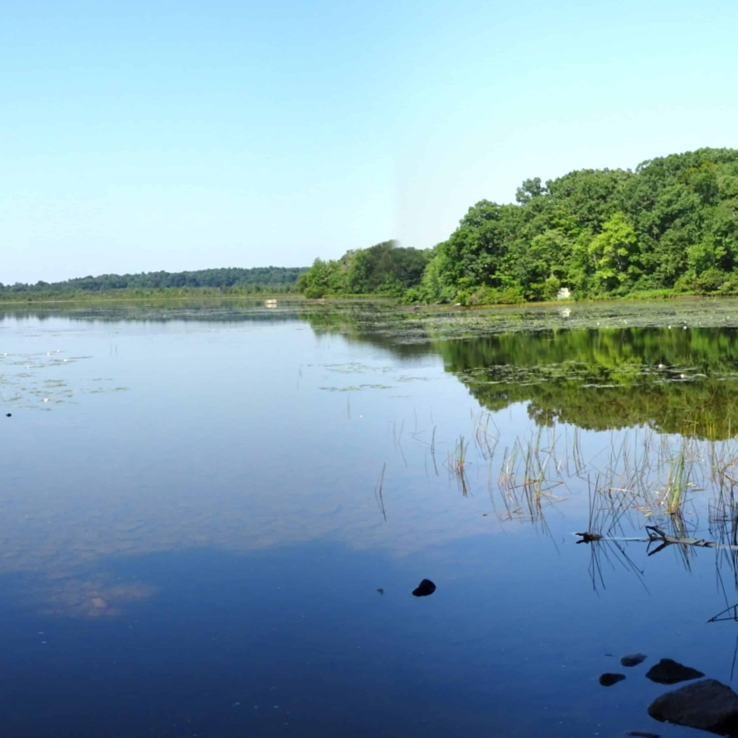 ponkapoag pond panorama