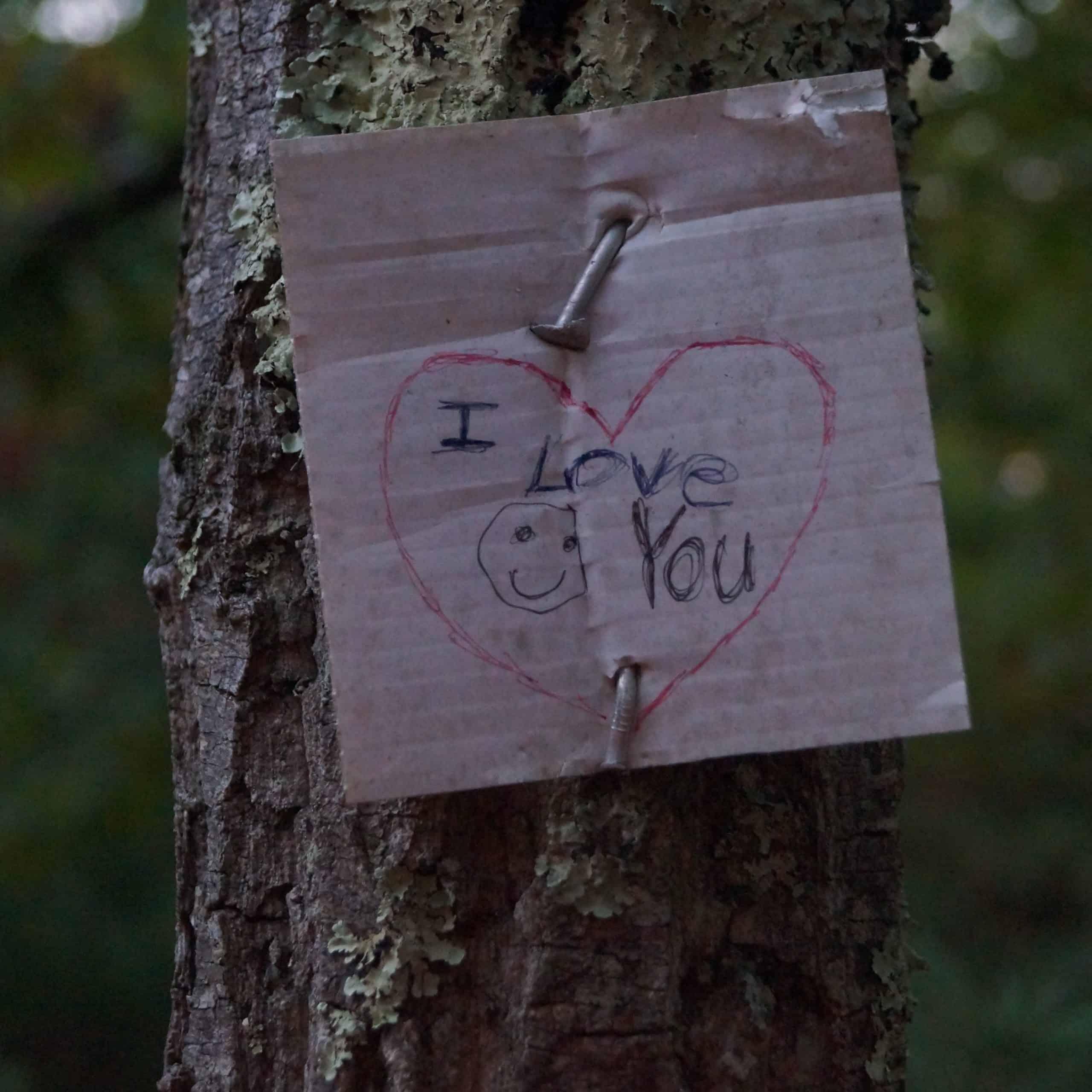 trail love